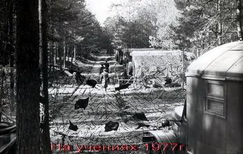 1977-53.jpg